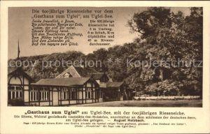 Uglei See Gasthaus zum Uglei 600 jaehrige Eiche Kat. Suesel