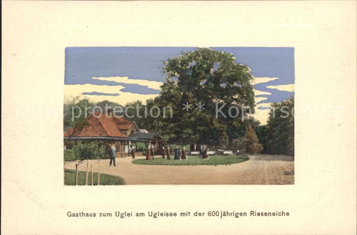 Uglei See Gasthaus zum Uglei 600 jaehrige Rieseneiche Kat. Suesel