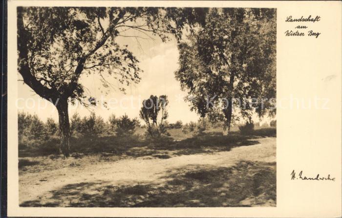 Lueneburger Heide Landschaft am Wietzer Berg Kat. Walsrode
