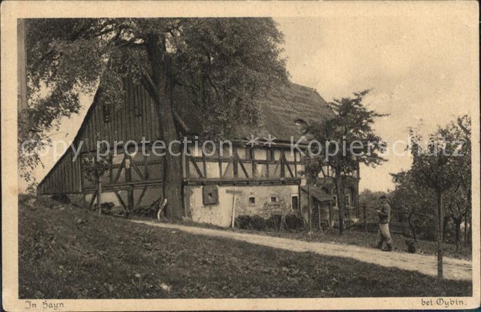 Hayn Oybin Bauernhaus Serie Saechsische Heimatschutz Postkarten