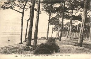 Arcachon Gironde Cote d Argent Kat. Arcachon