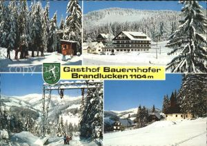 Heilbrunn Naintsch Gasthof Bauernhofer Brandlucken Wintersportplatz Lift Wappen