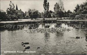 Sappemeer Prinses Margrietpark Ententeich
