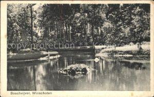 Winschoten Boschvijver Weiher Kat. Niederlande