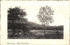 Soesterberg Heide Landschap Landschaft Kat. Soest