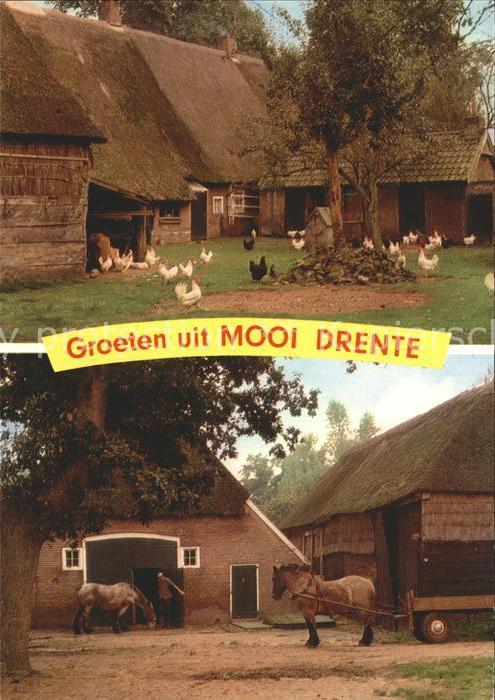Drente Bauernhof mit Pferdewagen