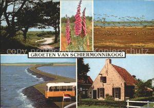Schiermonnikoog  Kat. Niederlande