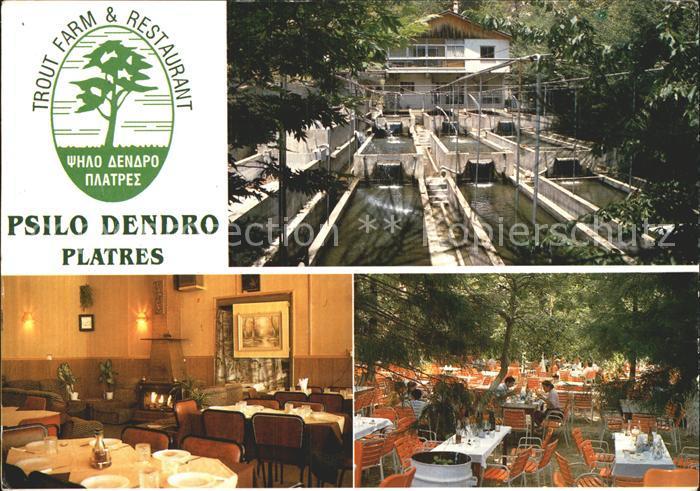 Zypern Cyprus Trout Farm und Restaurant Psilo Dendro Platres Kat. Zypern