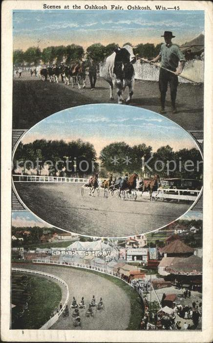Pferdesport Pferderennen Reitsport Oshkosh Fair  / Sport /
