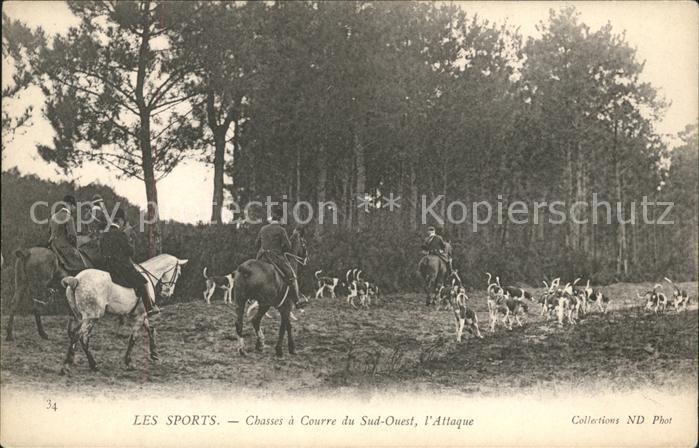 Pferdesport Pferderennen Reitsport Les Sports / Sport /
