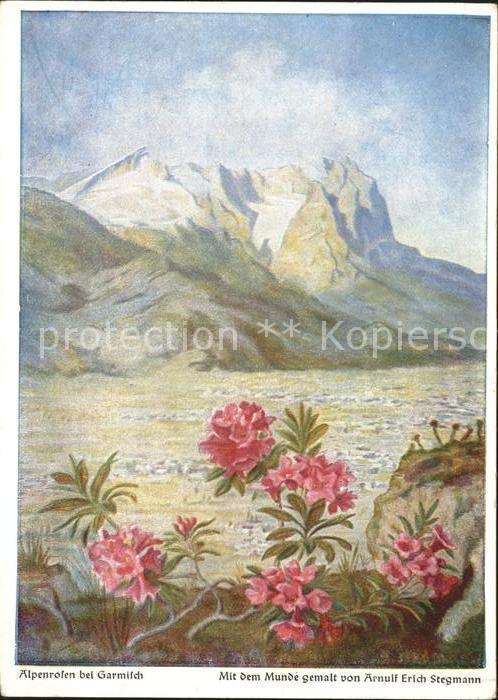 Kuenstlerkarte Alpenrosen bei Garmisch Arnulf Erich Stegmann Mund gemalt Dennoch Kuenstlerkarte Kat. Kuenstlerkarte