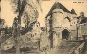 Burgen Altes Tor  Kat. Burgen und Schloesser