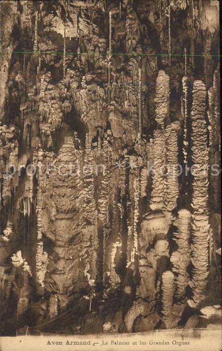 Hoehlen Caves Grottes Aven Armand Palmier et les Grandes Orgues Kat. Berge