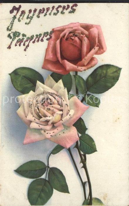 Rosen Joyeuses Paques Kat. Pflanzen