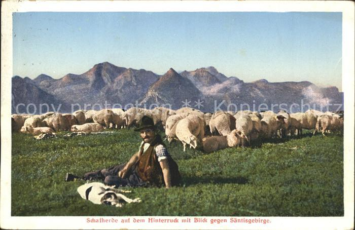 Hirte Schafherde Hinterruck Saentisgebirge Kat. Landwirtschaft