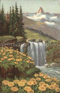 Frueh W. Wasserfall Tannen Goldpippau Kat. Kuenstlerkarte