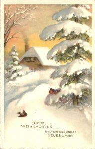 Petersen Hannes Weihnachten Neujahr Kleiber Haus Winterlandschaft Kat. Kuenstlerkarte