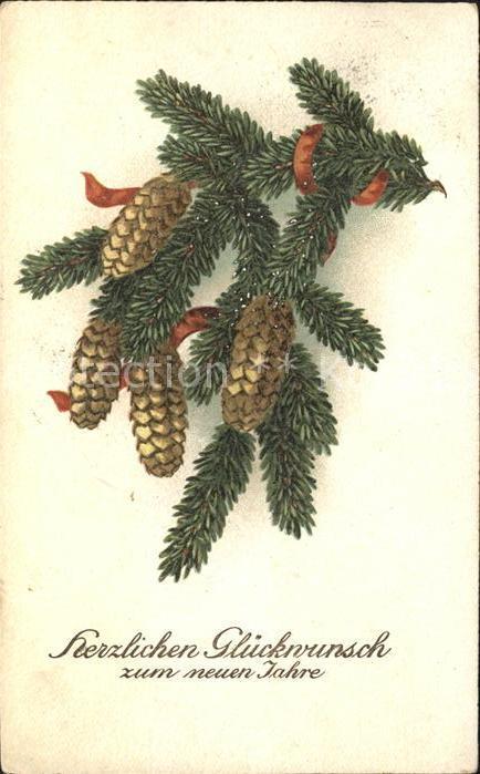 Tannenzapfen Glueckwunsch Neujahr
