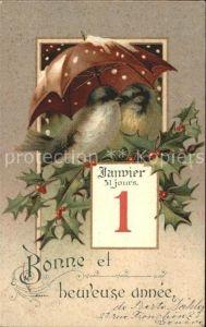 Datumskarte 1 Januar Neujahr Voegel Schirm Stechpalme Kat. Besonderheiten