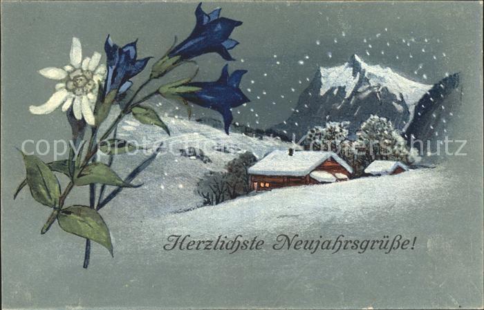 Edelweiss Enzian Neujahr PAX  Kat. Pflanzen