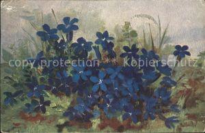 Haller Anna Blaue Blumen  Kat. Kuenstlerkarte