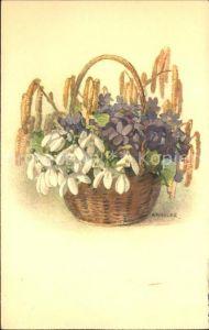 Haller Anna Nr. 370 Hasel Schneegloeckchen Veilchen  Kat. Kuenstlerkarte