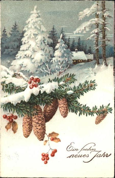Tannenzapfen Neujahr Kat. Pflanzen