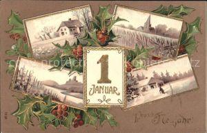 Datumskarte 1. Januar Neujahr Stechpalme  Kat. Besonderheiten