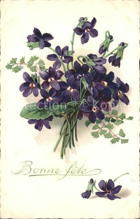 Blumen Veilchen Bonne fete Litho Kat. Pflanzen