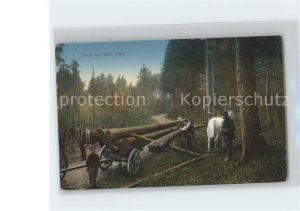 Forstwirtschaft Harz Baumtransport  Kat. Berufe