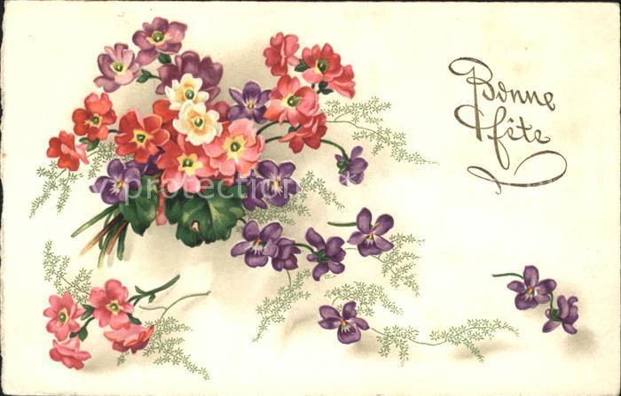 Blumen Veilchen Primeln Bonne Fete Litho Kat. Pflanzen