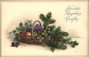 Neujahr Korb aepfel Veilchen Kleeblaetter Tannenzapfen Litho Kat. Greetings