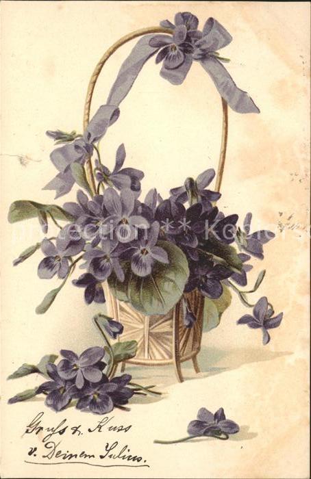 blumen veilchen korb litho kat pflanzen nr st88501. Black Bedroom Furniture Sets. Home Design Ideas