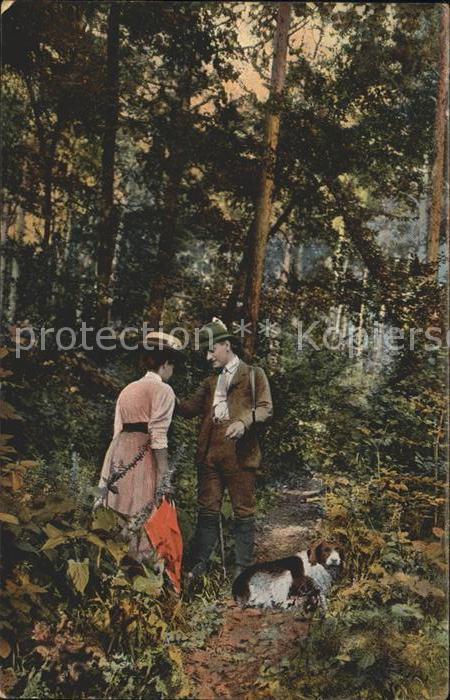 Jagd Hund Paar Wald  Kat. Sport