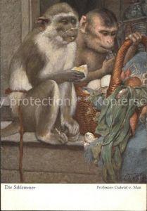 Affen Kuenstlerkarte Die Schlemmer Professor Gabriel v. Max Nr. 292 Kat. Tiere