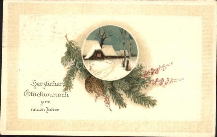 Neujahr Tannenzapfen Litho Kat. Greetings