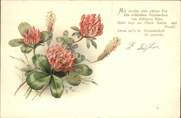Kleeblatt Kleeblatt Blumen Gedicht Litho Kat. Greetings