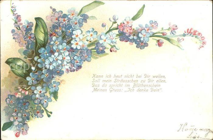 Blumengruesse Vergissmeinnicht Gedicht Litho Kat Greetings