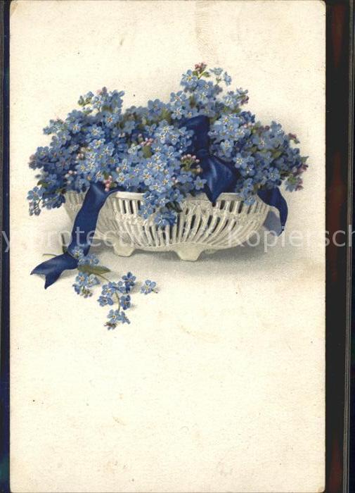 Blumen Vergissmeinnicht Schleife Litho Kat. Pflanzen