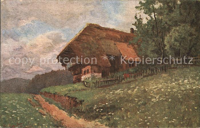 Spitz C. Schwarzwaldhaus Nr. 6 Kat. Schwarzwaldkuenstler