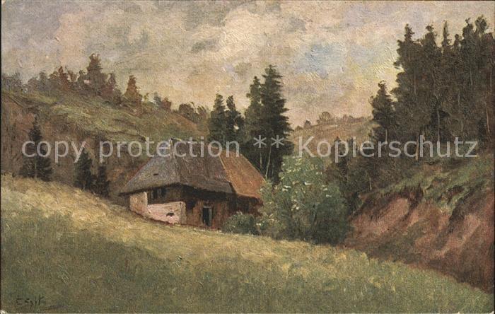 Spitz C. Schwarzwaldhaus Nr. 2 Kat. Schwarzwaldkuenstler