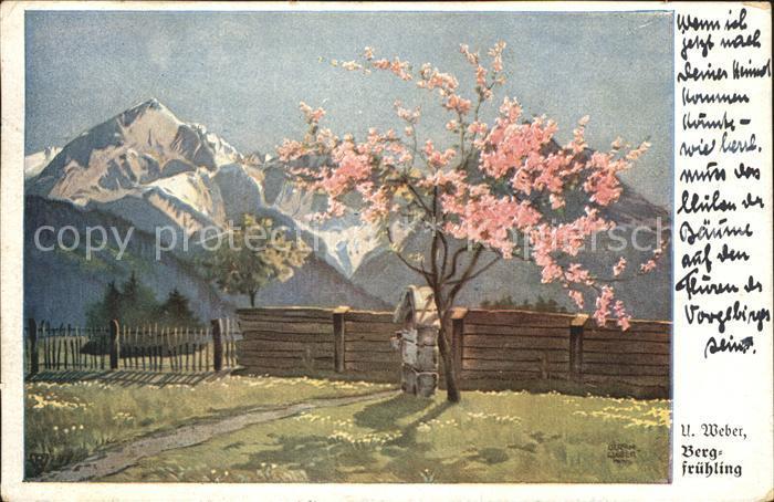 Kuenstlerkarte U. Weber Bergfruehling  Kat. Kuenstlerkarte