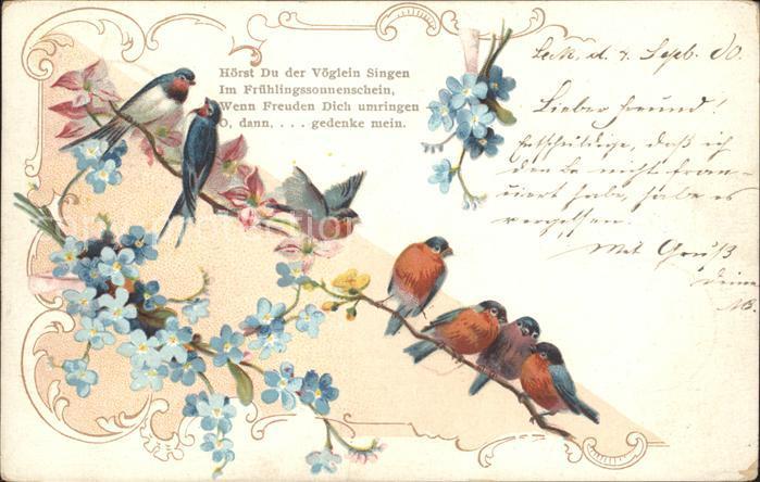 Voegel Rotkehlchen Schwalben Vergissmeinnicht Gedicht Litho Kat Tiere