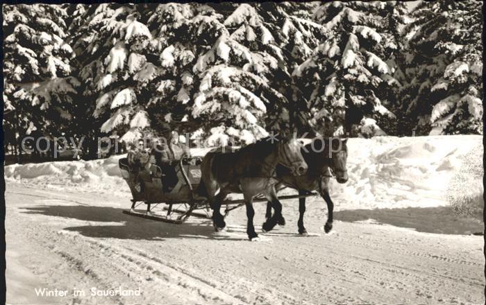 Schlitten Schnee Pferdeschlitten Sauerland  Kat. Sport