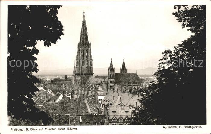 Fotograf Freiburg Im Breisgau foto baumgartner e nr 8225 freiburg im breisgau muenster