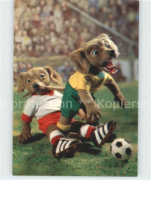 Fussball Hunde Waggi Cup Serie  Kat. Sport