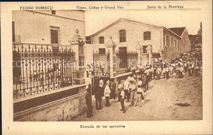 Wein Bodegas Fundador Pedro Domecq Jerez de la Frontera Vinos Conac  Kat. Lebensmittel