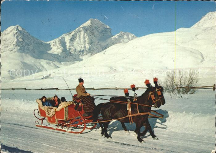 Schlitten Schnee Pferdeschlitten Engadin Kat. Sport