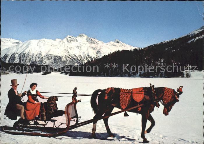 Schlitten Schnee Pferdeschlitten Engadin Schlittengespann  Kat. Sport