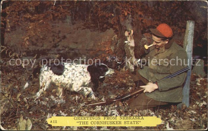 Jagd Jaeger Hund Kaninchen Nebraska  Kat. Sport